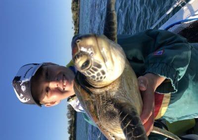 Merit 1st - Martin Soutar - Turtle