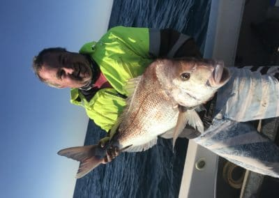 Snapper 1st -Tony Hutchins Holding